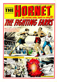 Cover Thumbnail for The Hornet (D.C. Thomson, 1963 series) #316