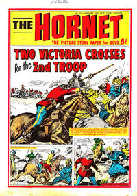 Cover Thumbnail for The Hornet (D.C. Thomson, 1963 series) #333