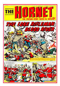 Cover Thumbnail for The Hornet (D.C. Thomson, 1963 series) #339