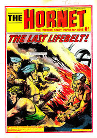 Cover Thumbnail for The Hornet (D.C. Thomson, 1963 series) #348