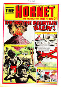 Cover Thumbnail for The Hornet (D.C. Thomson, 1963 series) #349