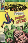 Cover Thumbnail for The Amazing Spider-Man (1963 series) #228 [Newsstand Edition]