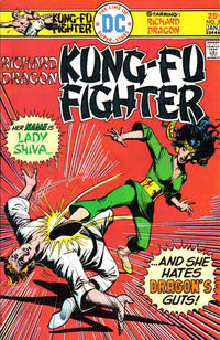 Cover Thumbnail for Richard Dragon, Kung-Fu Fighter (DC, 1975 series) #5