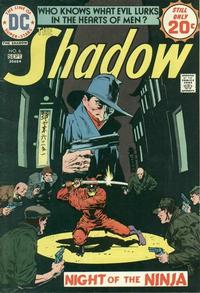 Cover Thumbnail for The Shadow (DC, 1973 series) #6