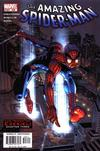 Cover for The Amazing Spider-Man (Marvel, 1999 series) #508 [Direct Edition]