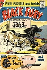 Cover Thumbnail for Black Fury (Charlton, 1955 series) #22