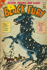 Cover Thumbnail for Black Fury (Charlton, 1955 series) #33