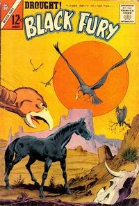 Cover Thumbnail for Black Fury (Charlton, 1955 series) #43