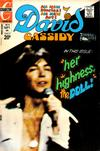 Cover for David Cassidy (Charlton, 1972 series) #14