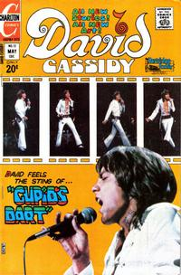 Cover Thumbnail for David Cassidy (Charlton, 1972 series) #12
