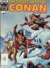 Cover for The Savage Sword of Conan (Marvel, 1974 series) #132