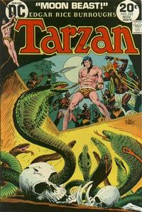 Cover Thumbnail for Tarzan (DC, 1972 series) #225