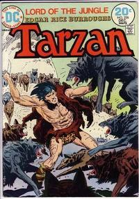 Cover for Tarzan (DC, 1972 series) #226