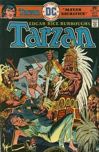 Cover Thumbnail for Tarzan (DC, 1972 series) #242