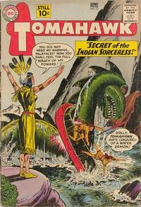 Cover Thumbnail for Tomahawk (DC, 1950 series) #73