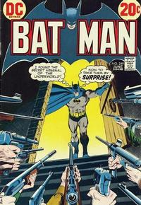 Cover Thumbnail for Batman (DC, 1940 series) #249