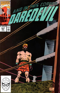 Cover Thumbnail for Daredevil (Marvel, 1964 series) #287 [Direct Edition]