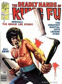 Cover Thumbnail for The Deadly Hands of Kung Fu (Marvel, 1974 series) #28