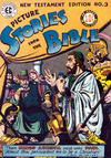 Cover for Picture Stories from the Bible New Testament (EC, 1946 series) #3