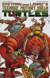Cover for Teenage Mutant Ninja Turtles (Mirage, 1984 series) #43