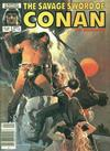 Cover for The Savage Sword of Conan (Marvel, 1974 series) #116