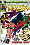 The Amazing Spider-Man #214