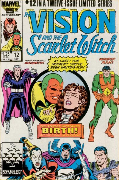 Cover for The Vision and the Scarlet Witch (Marvel, 1985 series) #12 [Direct Edition]