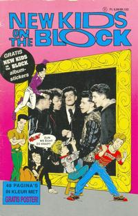 Cover Thumbnail for New Kids on the Block (JuniorPress, 1991 series) #2