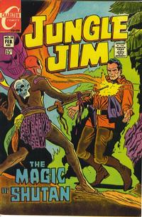 Cover Thumbnail for Jungle Jim (Charlton, 1969 series) #28