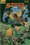 Cover for The Badger (First, 1985 series) #15