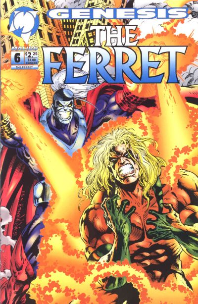 Cover for The Ferret (1993 series) #6