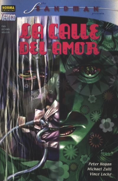 Cover for Colección Vertigo (1997 series) #162