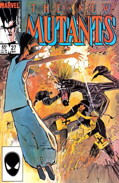Cover for The New Mutants (1983 series) #27 [newsstand]