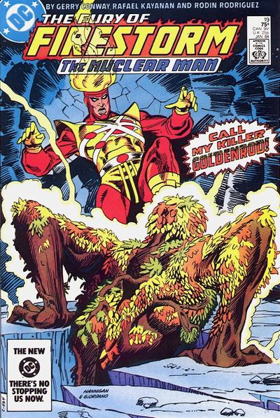 Cover for The Fury of Firestorm (1982 series) #19 [Direct]