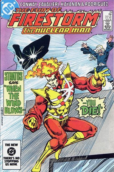 Cover for The Fury of Firestorm (DC, 1982 series) #29 [direct-sales]