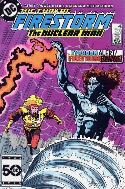 Cover for The Fury of Firestorm (DC, 1982 series) #43 [Direct]