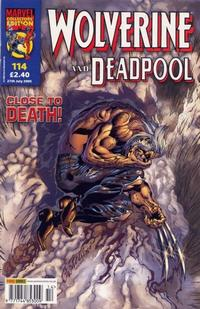 Cover Thumbnail for Wolverine and Deadpool (Panini UK, 2004 series) #114