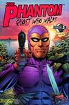 The Phantom: Ghost Who Walks #3
