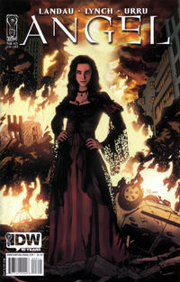 Cover Thumbnail for Angel (IDW Publishing, 2009 series) #25 [Cover B - Nick Runge]