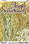 Angel Sanctuary #13