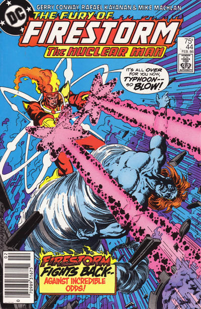 Cover for The Fury of Firestorm (1982 series) #44 [Direct]