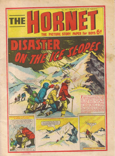 Cover for The Hornet (D.C. Thomson, 1963 series) #341