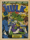 Cover for Hulk Comic (Marvel UK, 1979 series) #16
