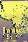 Cover for Banana Fish (Viz, 2004 series) #10