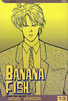 Cover for Banana Fish (Viz, 2004 series) #13
