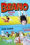 Cover for The Beano Book (D.C. Thomson, 1939 series) #1981