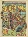 Cover for The Spectacular Spider-Man Weekly (Marvel UK, 1979 series) #339