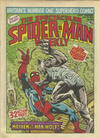 Cover for The Spectacular Spider-Man Weekly (Marvel UK, 1979 series) #346