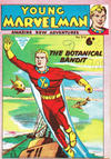 Cover for Young Marvelman (L. Miller & Son, 1954 series) #319