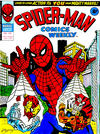 Cover for Spider-Man Comics Weekly (Marvel UK, 1973 series) #142
